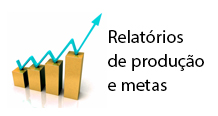 relatorio metas grafica 2013